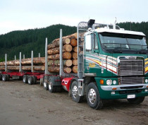 Traction Air Forestry